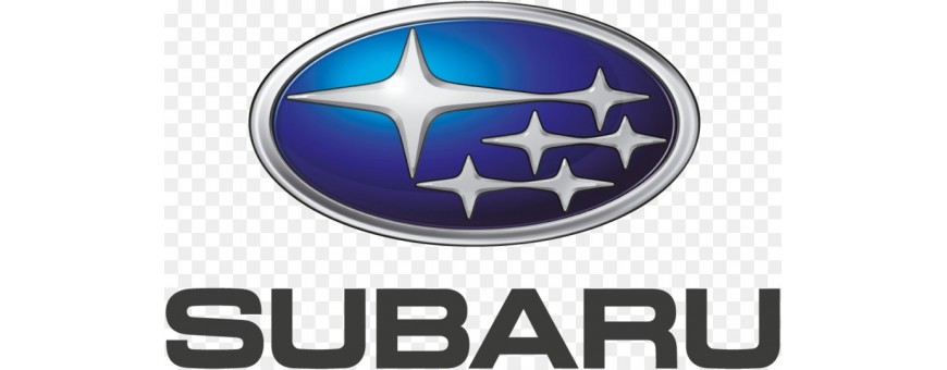 Acrylic airbrush scale model Subaru colors