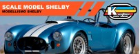 Acrylic water based shelby scale model paint
